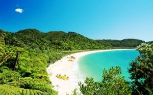Beach-Abel-Tasman-National-Park-new-Zealand